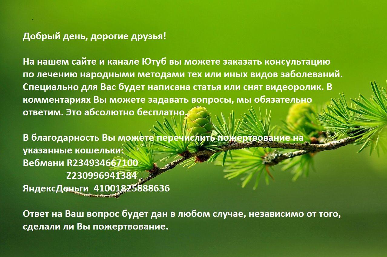 larch-163340-1280